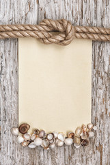 Ship rope, canvas, sea shells and wood background