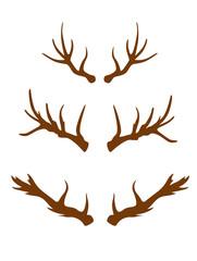 dear horns