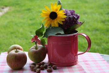 Äpfel und Nüsse neben dekorativer Gießkanne