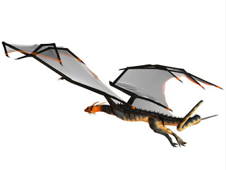 Blue Wasp Dragon Flight