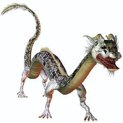 Silver Gold Dragon