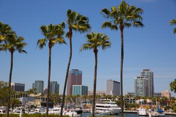 Long Beach California skyline from palm trees of port