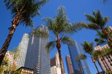 Wall Mural - LA Downtown Los Angeles Pershing Square palm tress