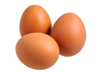 Chicken eggs isolated