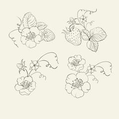 Strawberry elements