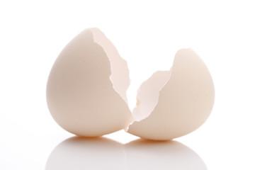 割れた卵の殻