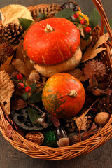 Fall decoration on wooden background