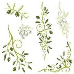 Vektor Set mit Oliven und Olivenzweigen. Küche, kochen.