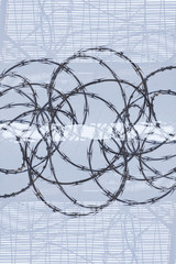 Razor wire against a blue background