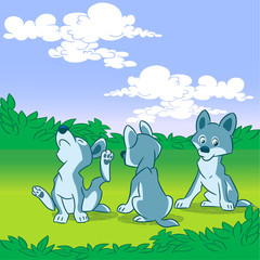 three wolf cub
