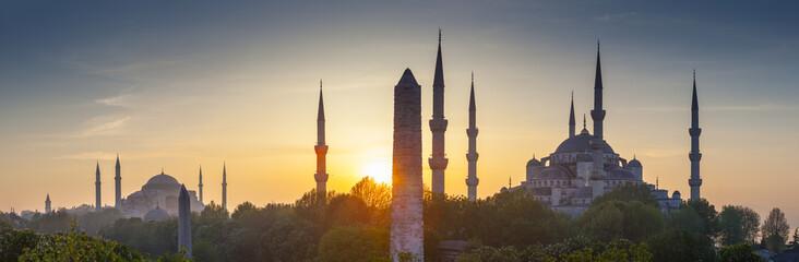 Wall Murals Turkey Sultanahmet Camii / Blue Mosque, Istanbul, Turkey