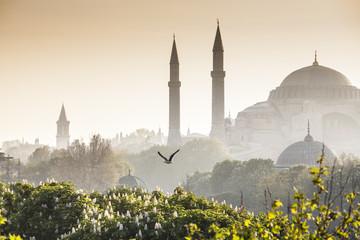 Aluminium Prints Turkey Sultanahmet Camii / Blue Mosque, Istanbul, Turkey