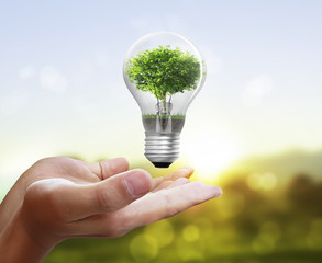 Light bulb, in hand