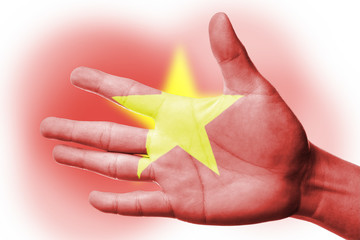 Cheering fan with Painting national Vietnam flag