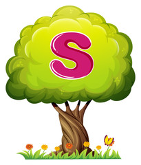 A tree with a letter S