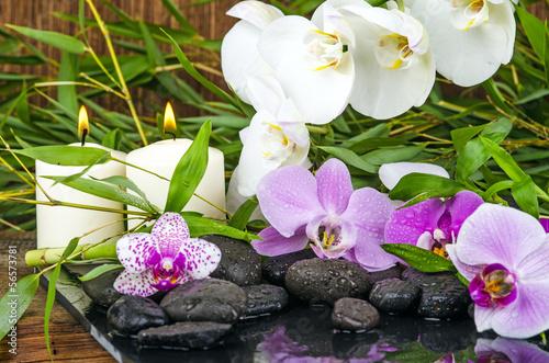 Wellness Orchideen Bambus Steine Wasser Kerzenlicht Stockfotos