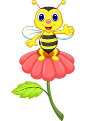 cute little bee on red flower