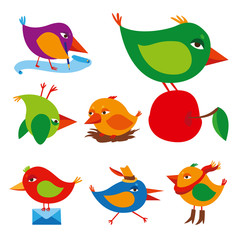 Cartoon birds set