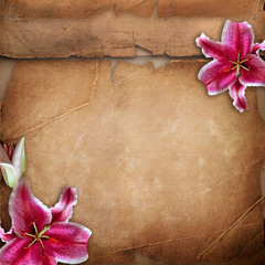 Framework for photo with spring flowers over old paper album cov