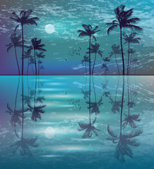 Wall Mural - Palm trees at night in moonlight with reflection in water
