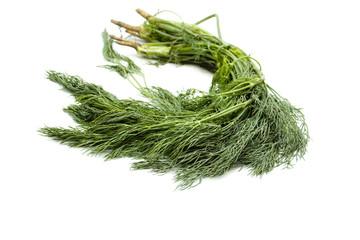 Frischer Grüner Dill auf weißem Hintergrund