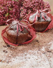 Chocolate cupcakes for Valentine's day