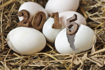 HaHappy New Year 2015 on a nest of hay, eggs concept.