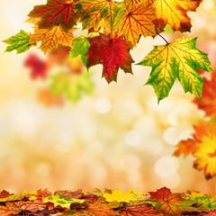Wall Mural - Herbst Hintergrund umrahmt mit buntem Laub
