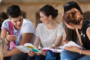 Lernen draußen auf dem Schulhof Wall mural
