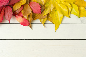 Autumn leaves on wooden background, frame.