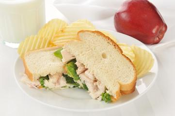 chicken sandwich with an apple