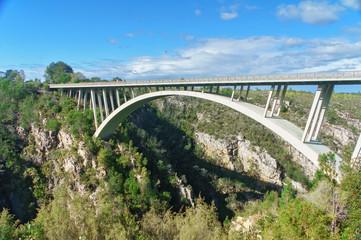 Poster de jardin Afrique du Sud Bridge in Tsitsikamma national park, Garden route, South Africa