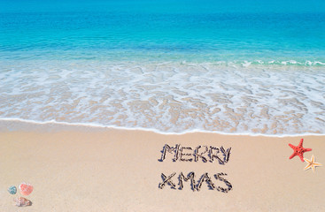 merry sandy Xmas