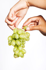 female hand holding grapes