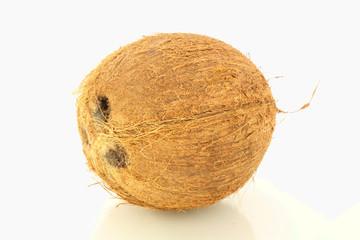 coconut whole closeup