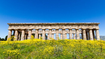 Wall Mural - Ancient greek temple of Segesta