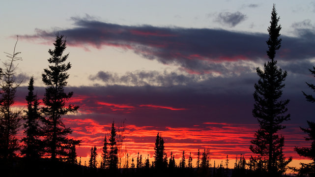 Red sunset behind forest and dark clouds near Fairbanks