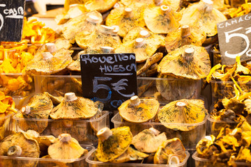 Mushrooms at a stand in the Boqueria Market,Barcelona