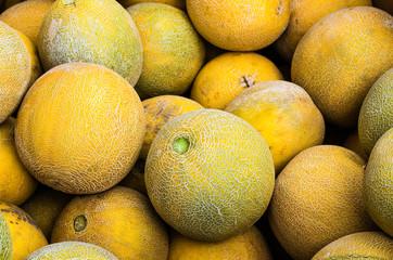 Cantalope melons on display at market