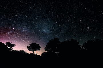 The Milky Way with silhouette of mediteranean trees