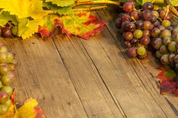 Weinschild