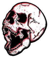 Skull very expressive