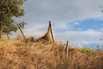a fence posts and an italian farm field