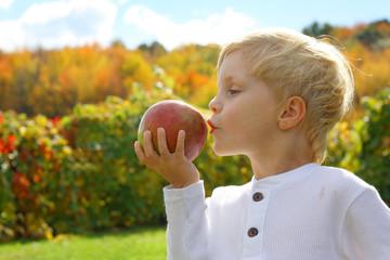 Child Kissing Apple on Autumn Day