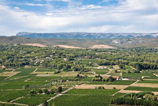 Vignoble de Bandol, massif de la Sainte Baume, Frande