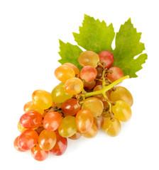 Ripe sweet grape, isolated on white