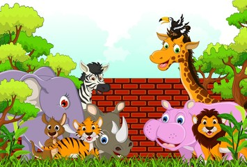 vector illustration of cute animal wildlife cartoon