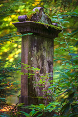 Medieval tombstone in an autumn forest
