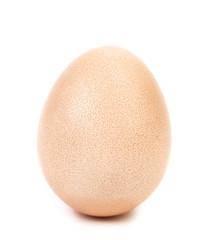 Closeup of white egg.