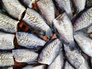 drying snakeskin gourami fishes in local market, Thailand